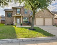 12217 Langley Hill Drive, Fort Worth image