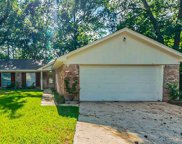 23906 Conefall Court, Spring image
