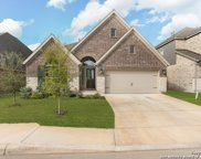 14518 Hallows Grove, San Antonio image