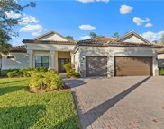 11034 Longwing  Drive, Fort Myers image