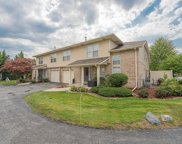 9370 Meadowview Drive, Orland Hills image
