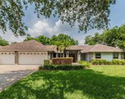 604 Grand National Place, Seffner image