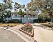 286 Berry Tree Dr., Pawleys Island image