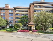 3801 Mission Hills Road Unit 208, Northbrook image