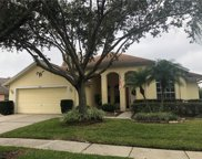 16611 Lake Heather Drive, Tampa image