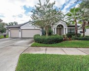 11813 Harpswell Drive, Riverview image