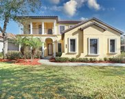 8322 Windsor Bluff Drive, Tampa image