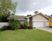 12219 Steppingstone Boulevard, Tampa image