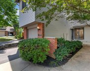 1711 Thorny Briar, St Louis image