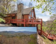 321 Don Worley Road, Otto image