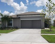10007 Caraway Spice Avenue, Riverview image