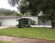4010 Barwood Court, Tampa image