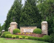 1003 Autumn Ridge Court, Spring Hill image