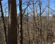 Lot 1 Clabo Mtn Way, Sevierville image