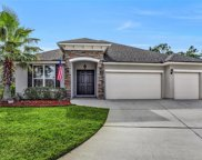 2020 PURPLE LEAF CT, Fleming Island image
