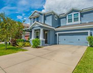 130 Philippe Grand Court, Safety Harbor image