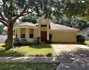 567 Forsyth Creek Court, Apopka image