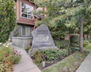 40653 Tantalus Road Unit 35, Squamish image