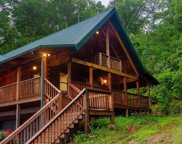 985 Old Cades Cove Rd, Townsend image