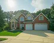 11936 Cannon Road, Orland Park image