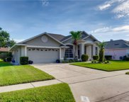 1141 Clinging Vine Place, Winter Springs image