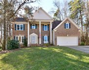 15615 Mayberry Place  Lane, Huntersville image