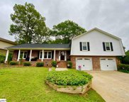 108 Sugar Cane Court, Greer image
