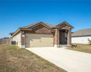 136 Red Sun Dr, Kyle image