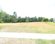 1049 Wigeon Dr., Conway image