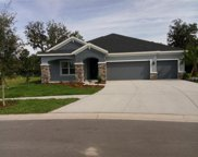 17707 Bright Wheat Drive, Lithia image