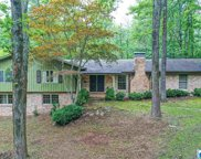 3128 Old Ivy Rd, Irondale image