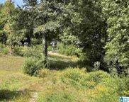 1811 Brookside Mt Olive Road Unit 29, Mount Olive image