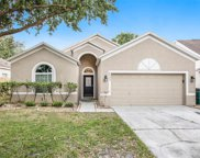 24326 Breezy Oak Court, Lutz image