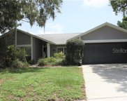 10402 Brushfield Street, Riverview image