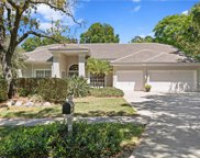 2313 Pinnacle Circle N, Palm Harbor image