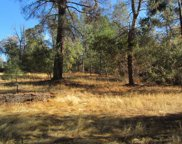 9050  Orval Beckett Court, Placerville image