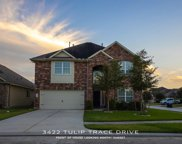 3422 Tulip Trace Drive, Spring image
