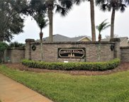 1720 Golden Poppy Court, Orlando image