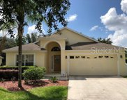15841 Robin Hill Loop, Clermont image