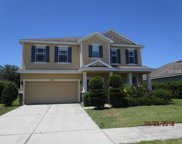 3204 Magnolia Meadows Drive, Plant City image