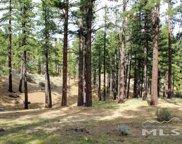 725 Kelly Canyon, Washoe Valley image