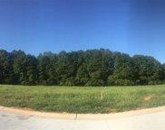 6 Vintage Oaks Way, Simpsonville image
