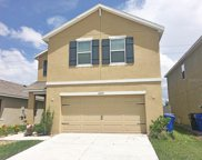 10257 Geese Trail Circle, Sun City Center image