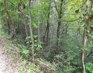 Rich Mountain Way, Sevierville image