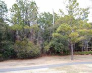 Lot 321 Wallace Pate Dr., Georgetown image