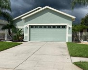 8409 Tarocco Court, Land O' Lakes image
