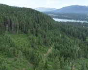 Nhn Forest Lane, Trout Creek image