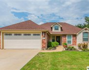 2604 Amber Forest  Trail, Belton image
