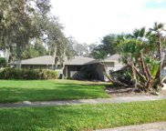 1120 Willowbrook Trail, Maitland image