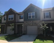 509  Common Raven Court Unit #961, Fort Mill image